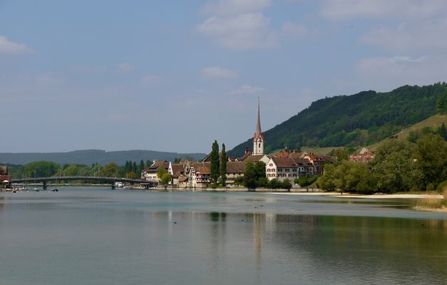 Rheininsel Werd