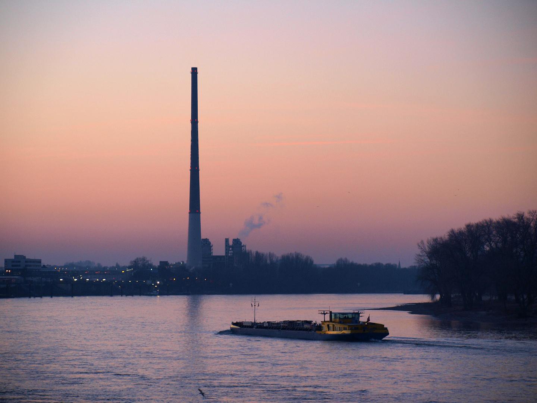 Rheinischer Morgen