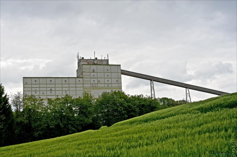 Rheinkalk 2
