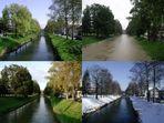 Rheintaler Binnenkanal in allen vier Jahreszeiten