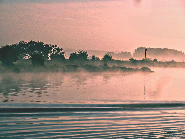 Rheinufer bei Nebel