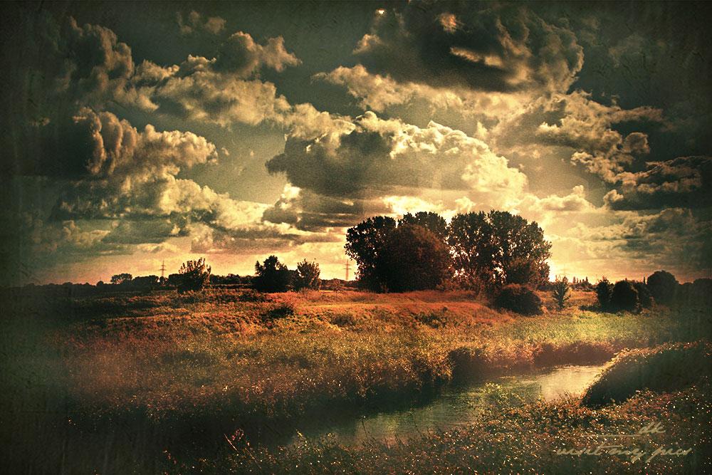 Rheinufer im Oktober