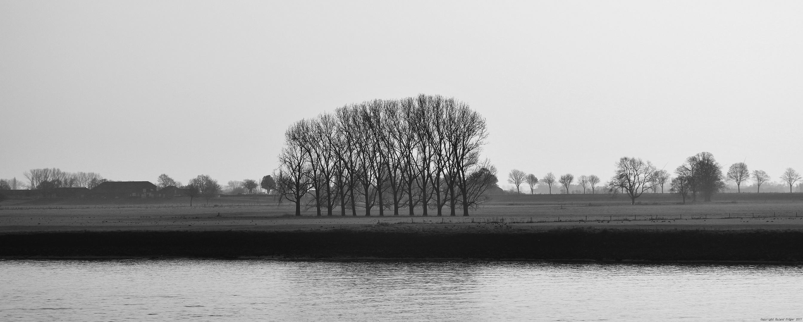 Rheinwiesen