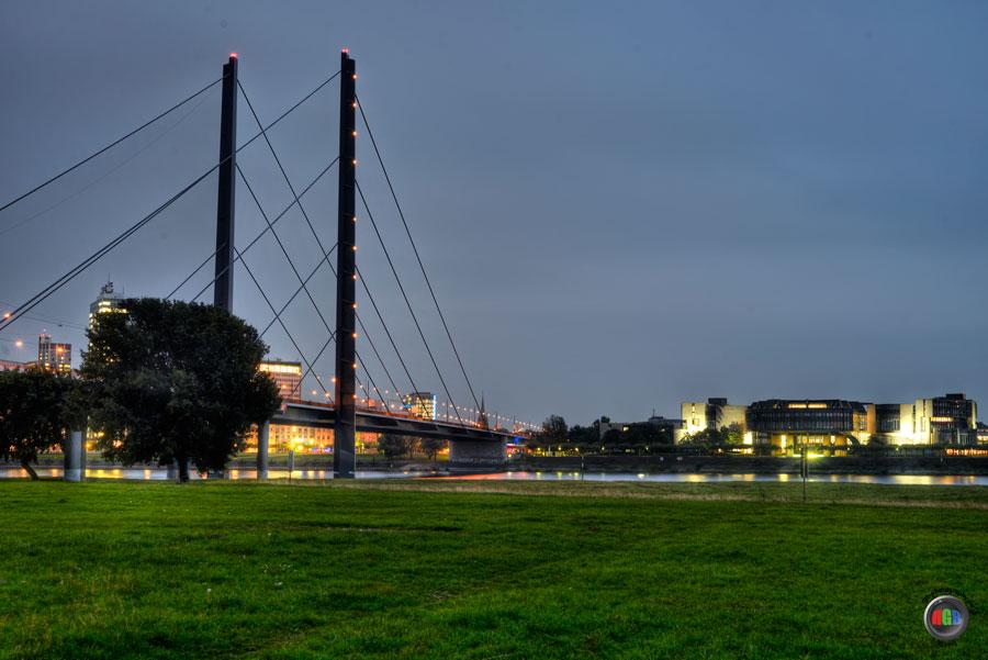Rheinwiesen Düsseldorf mit Blick auf den Medienhafen