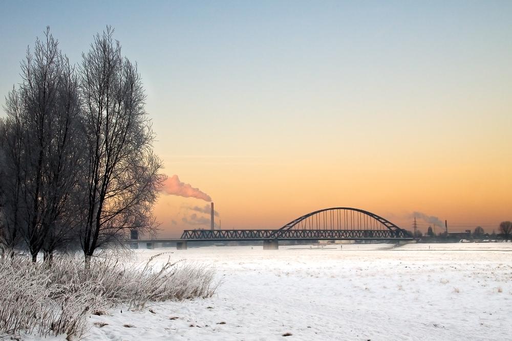 Rheinwiesen unter Schnee (Reload)
