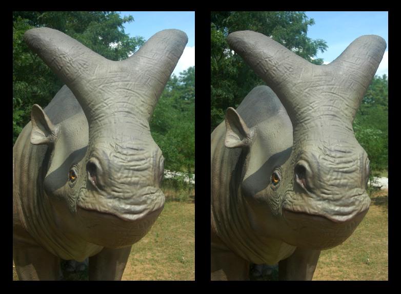 Rhino - Dino