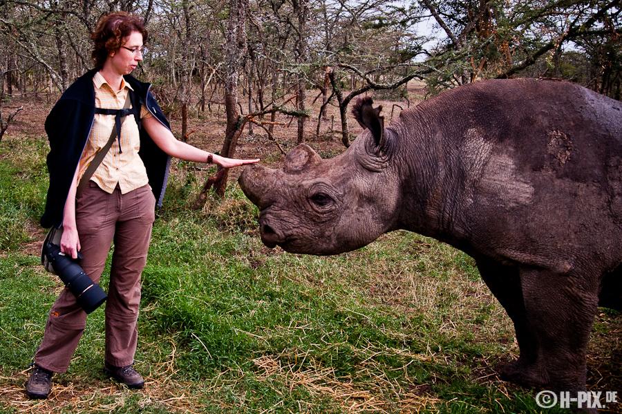 """Rhinoflüsterer ...oder """"wenn das 300er zu lang wird"""""""