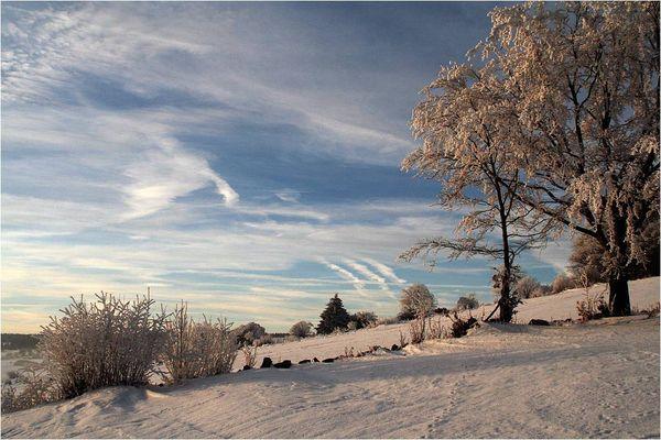 Rhön-Winter #1