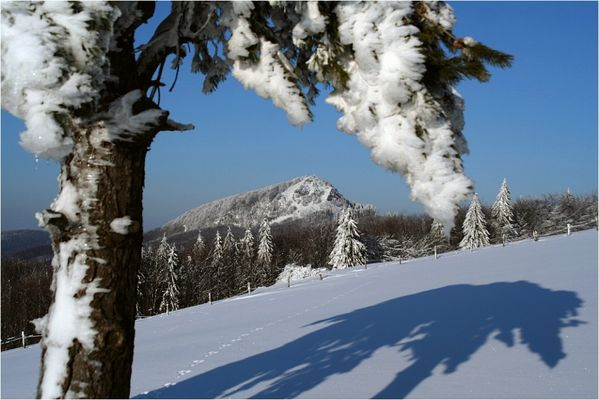 Rhön-Winter #3