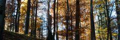 Rhöner Herbst