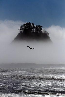 Rialto Beach - La Push, Washington State