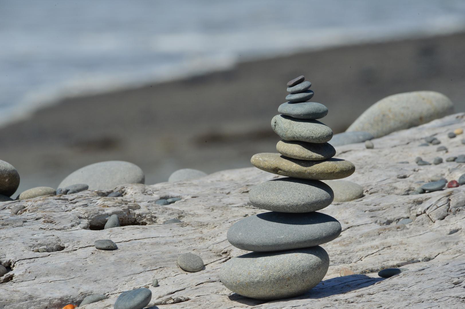 Rialto Beach - Time for Meditation