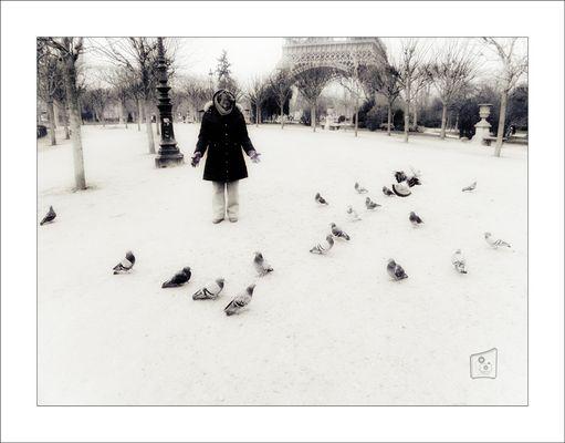 Ricordo di Elisabeth D'Amico - La donna che sussurrava ai piccioni