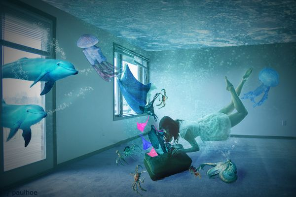 Ricordo di Paolo Zappa - Sogno o ...incubo?!?! A voi la scelta!!! :)))