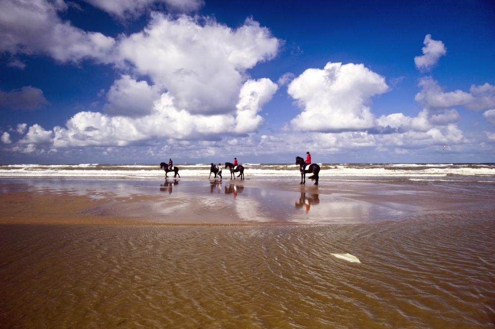 Riders, North Sea III