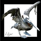 Riesenvogel