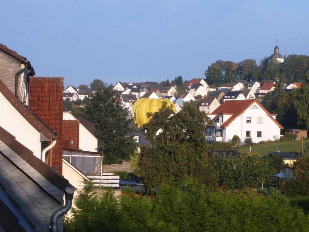 Riesige Bananenstaude in Warstein