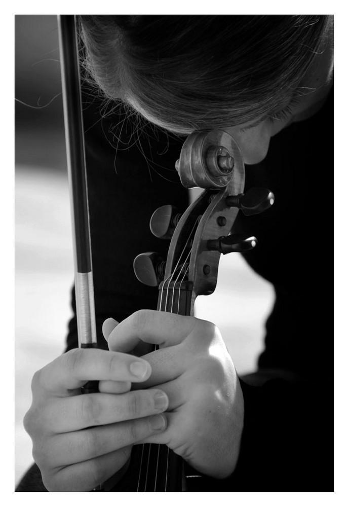 Riflessi da un violino 3