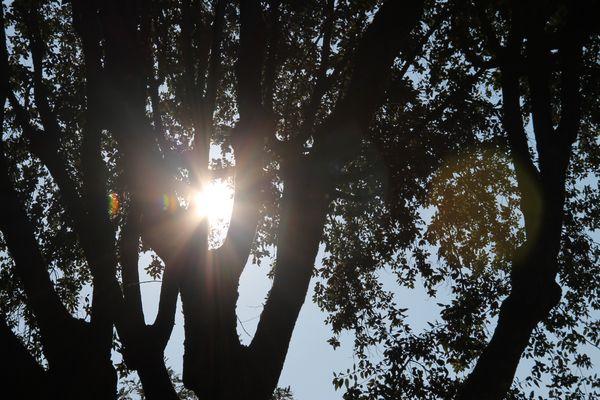 riflessi di luce