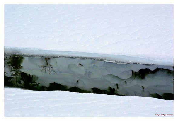 Riflessi di neve