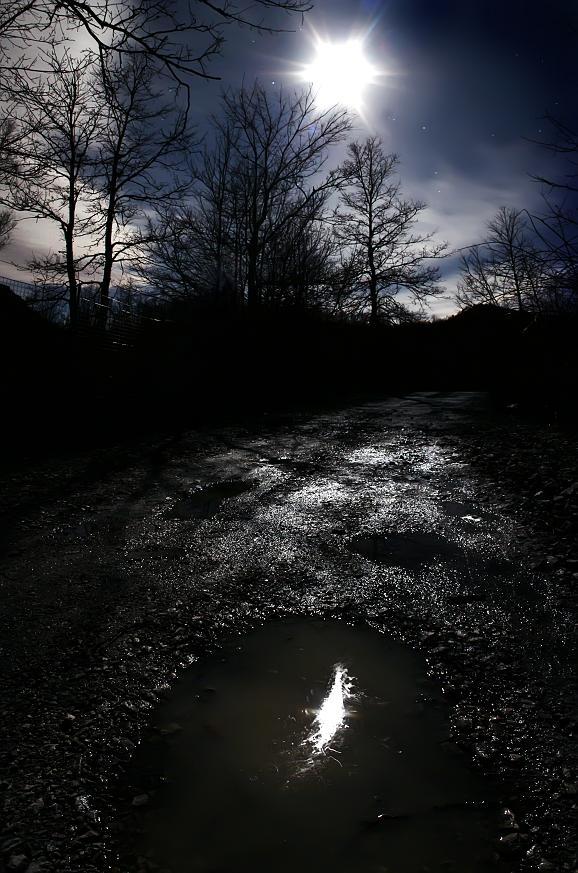 riflesso notturno