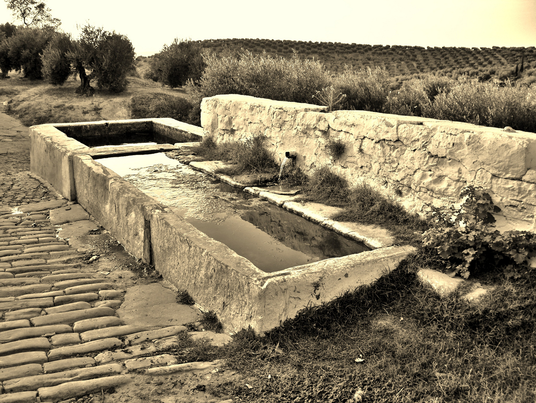 Rincones de Porcuna(Jaén)