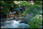 Rio Baztan Navarra