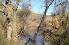 Río Genil en Otoño