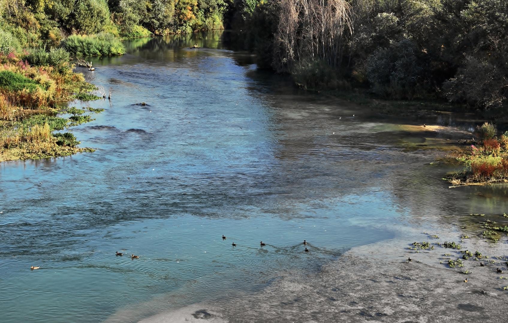 Rio Genil, su paso por Vadofresno