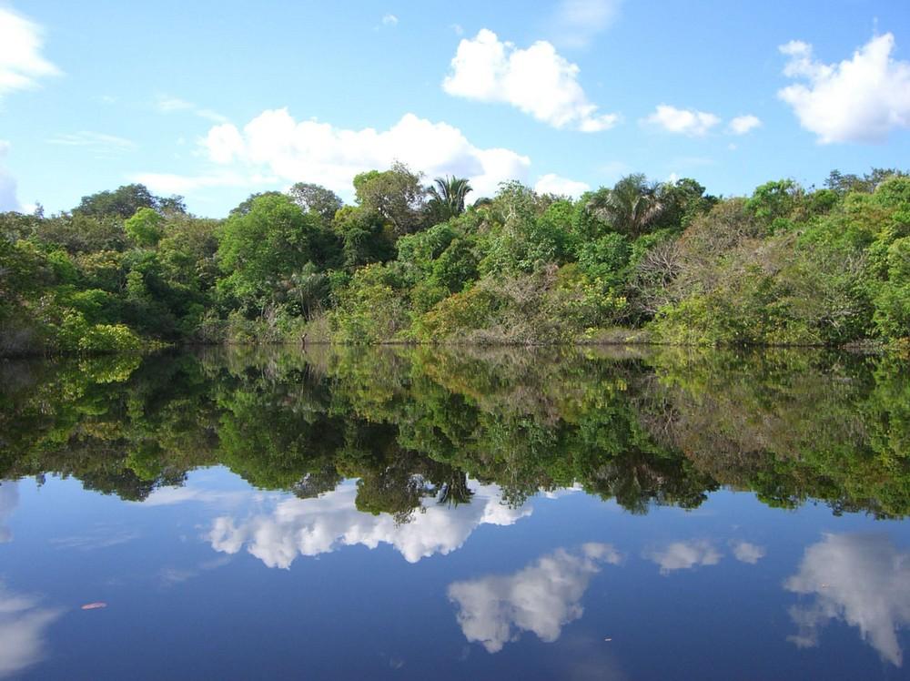 rio juma, amazon, brasil