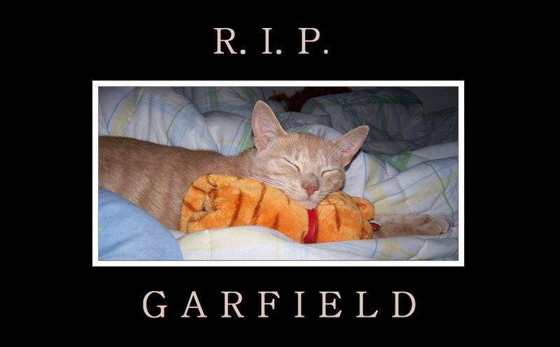 RIP Garfield