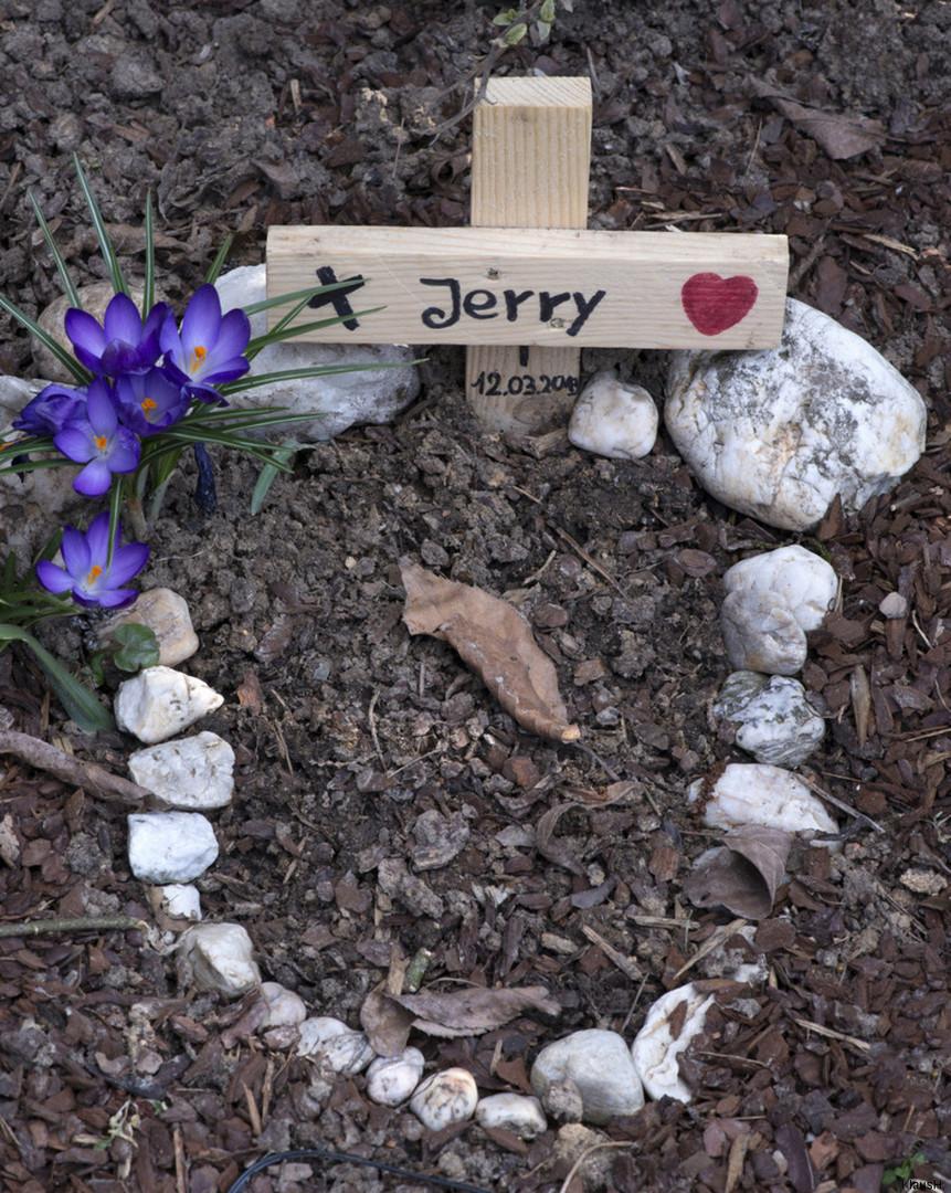 ~ R.I.P. Jerry ~