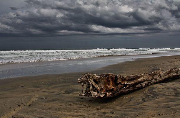 Ripiro Beach #2