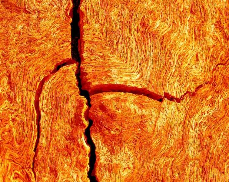 Risse auf der Venus