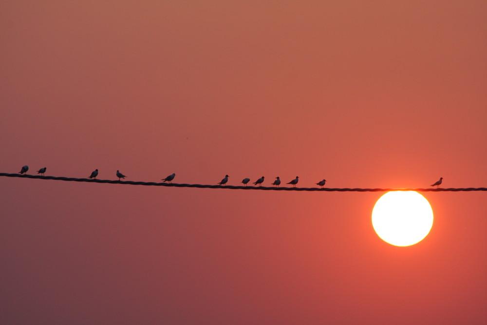 Ritrovo al tramonto