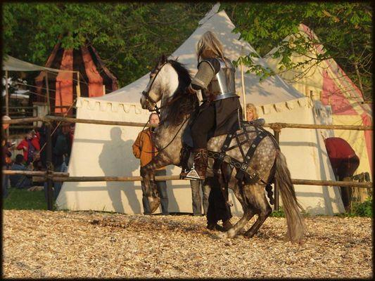 Ritter mit Pferd I