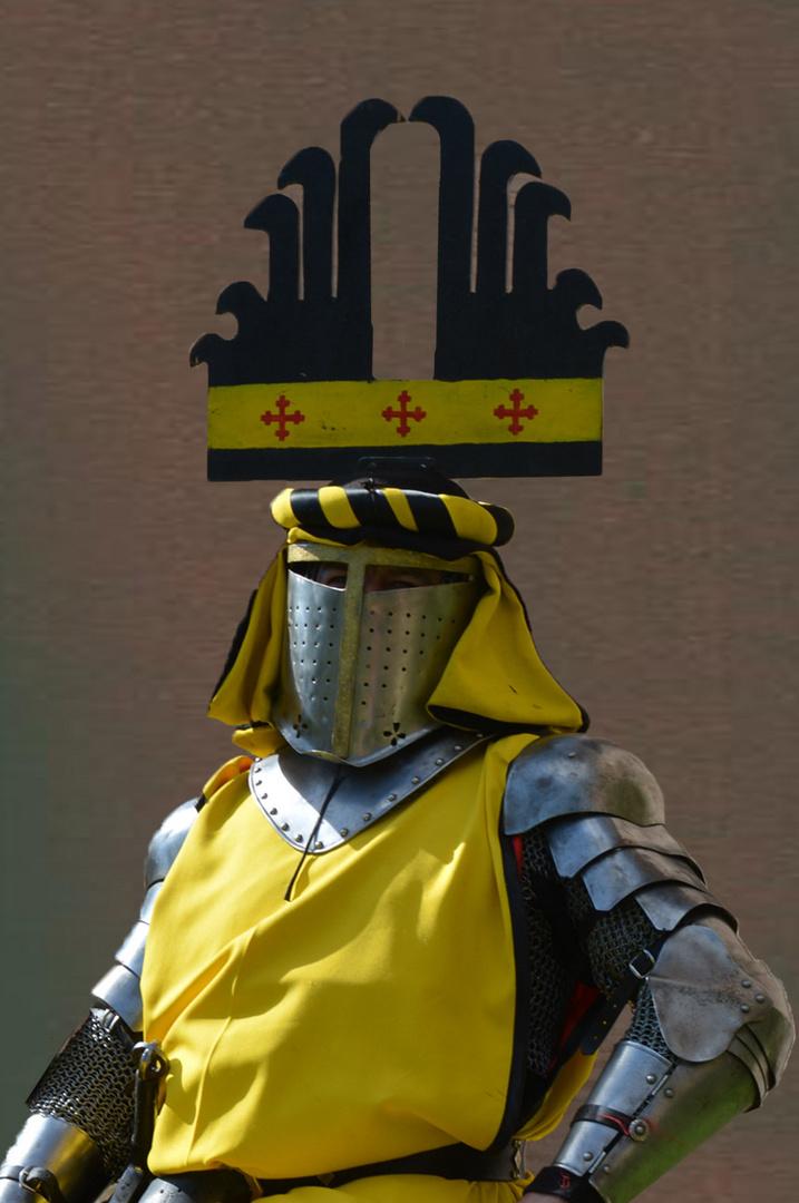 Ritter Norbert von den Turneydrachen