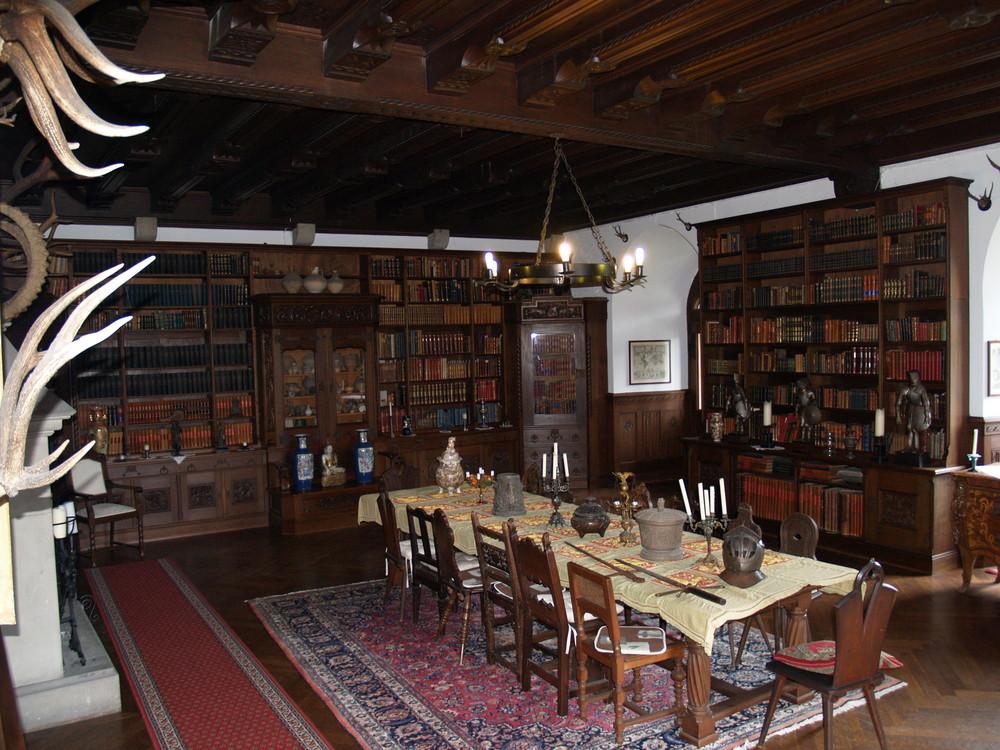 rittersaal mit bibliothek schloss reichenstein foto bild architektur stilepochen. Black Bedroom Furniture Sets. Home Design Ideas