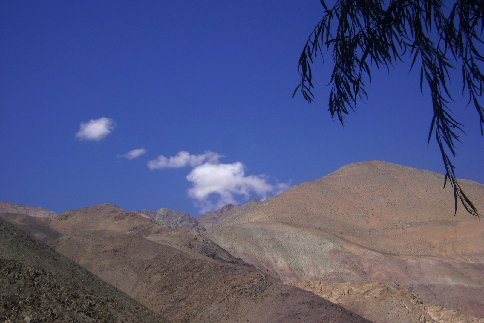 Rivadavia-Valle de Elqui- Chile
