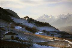 Rive gauche du Rhône en hiver