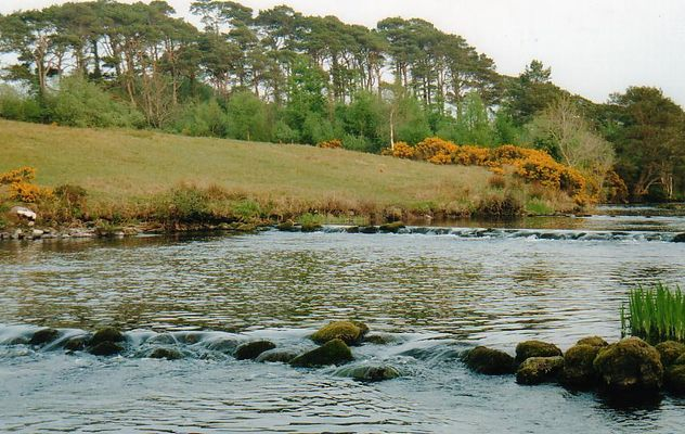 River Drowes