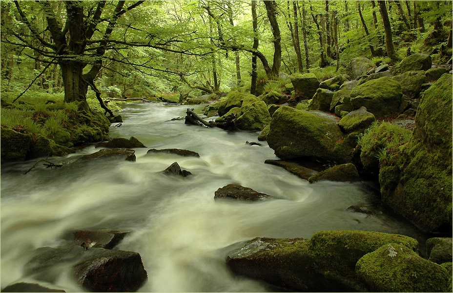 River Fowey