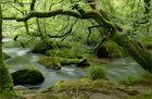 River Fowey, Cornwall