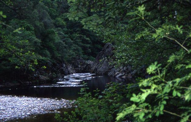River Garry, near Pitlochry
