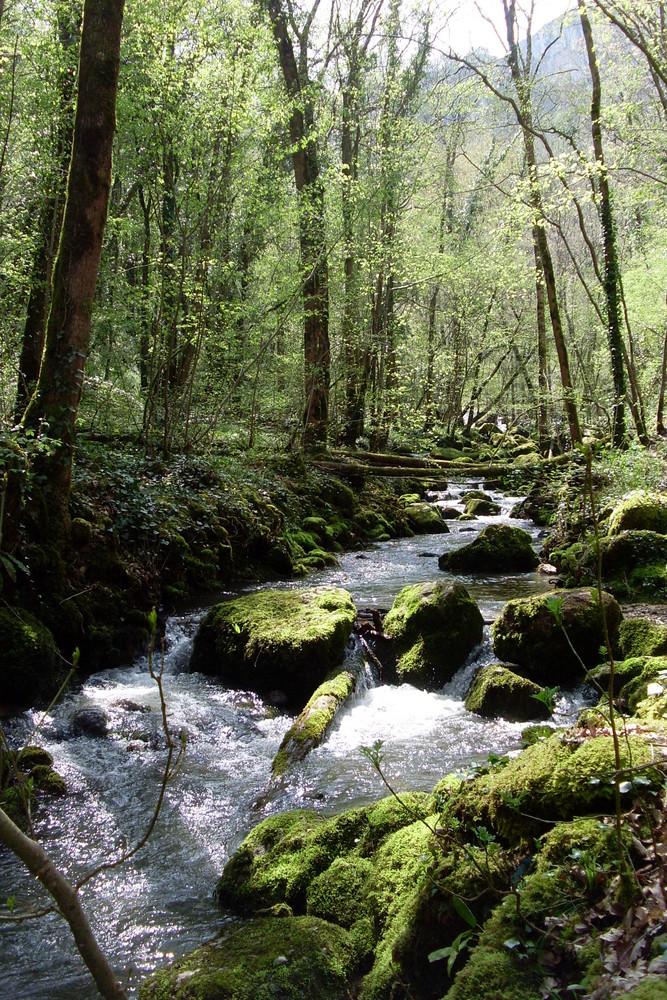 Rivière de la cascade d'autoire (lot)
