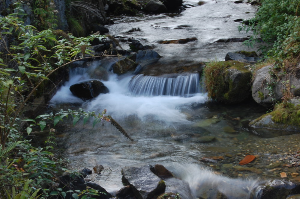 rivière des hautes pyrénées