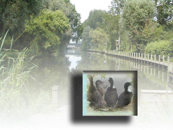 riviere du nord de la france