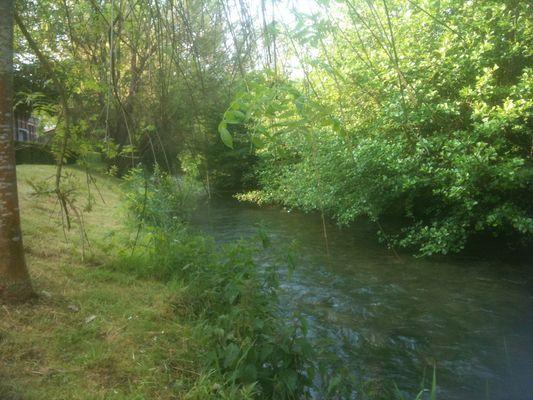 rivière en pleine ville