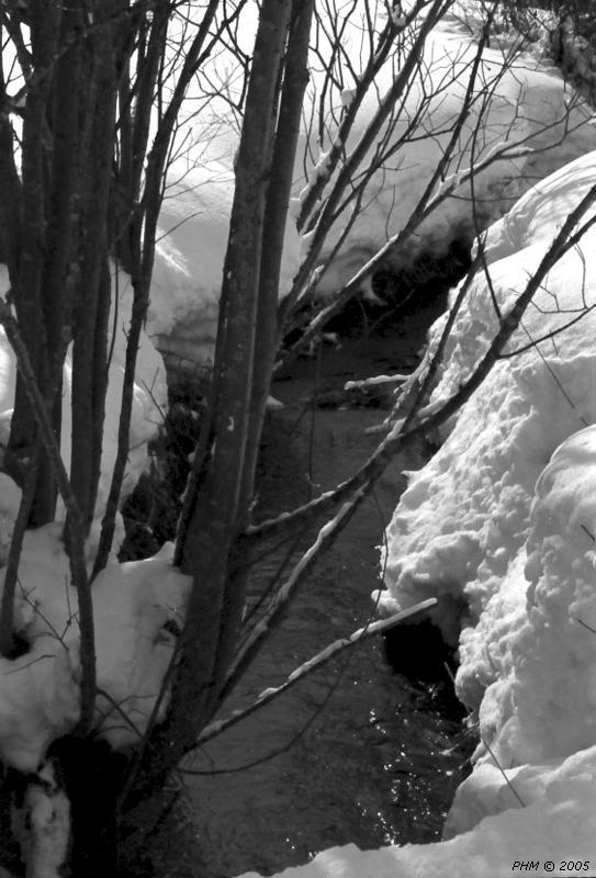Rivière froide