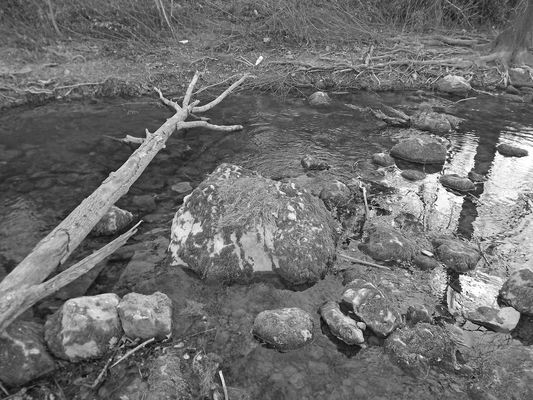 riviere noir et blanc